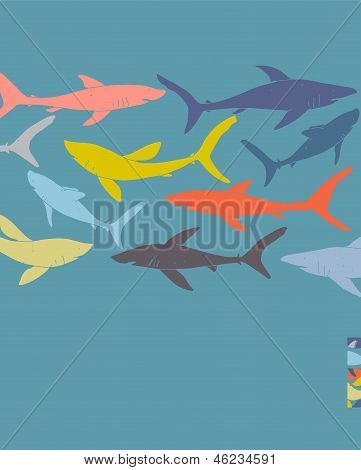 Template Poster Design With Hand-drawn Sharks Silhouettes.