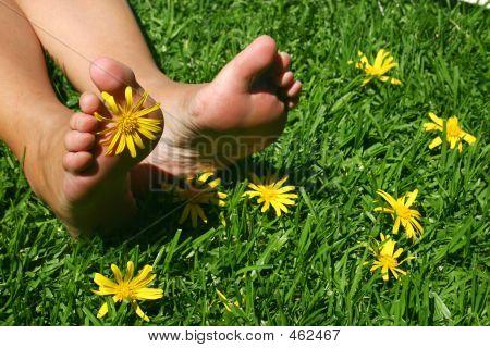 Grass Feet 3