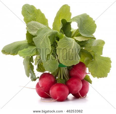 Small garden radish with leaves isolated on white background cutout