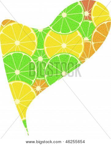 Citrus Fruit Heart. Isolated On White Background
