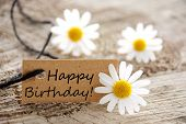 stock photo of birth  - a natural looking banner with happy birthday and white blossoms as background