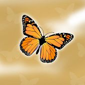 picture of monarch butterfly  - monarch butterfly illustration with background - JPG