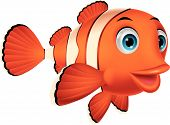 picture of clowns  - Vector illustration of Cute clown fish cartoon - JPG