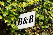stock photo of guest-house  - Traditional Bed and breakfast sign surrounded by an ivy creeper