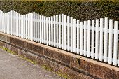 stock photo of stockade  - White Picket fence next to pathway with bush behind - JPG