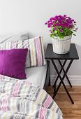 stock photo of pillowcase  - Purple flowers decorating a bright contemporary bedroom - JPG