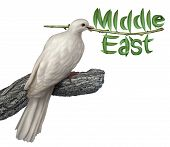 stock photo of kuwait  - Middle East peace plan and diplomacy concept with a white dove holding an olive branch with the leaves in the shape of the word that includes persian gulf Iran Egypt Libya Kuwait Israel Syria Saudi Arabia searching for a negotiated solution - JPG