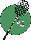 image of game-cock  - badminton racket and shuttlecocks - JPG