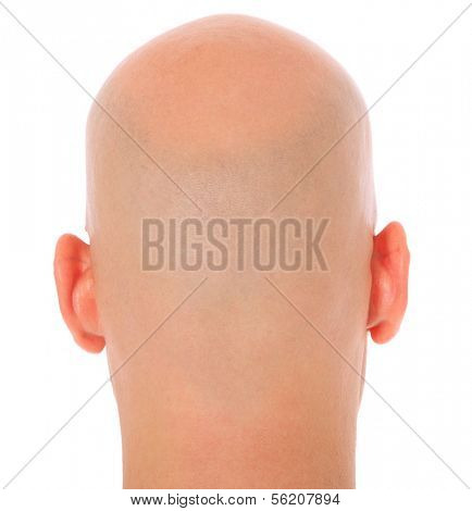 Back of the head of a bald man. All on white background.