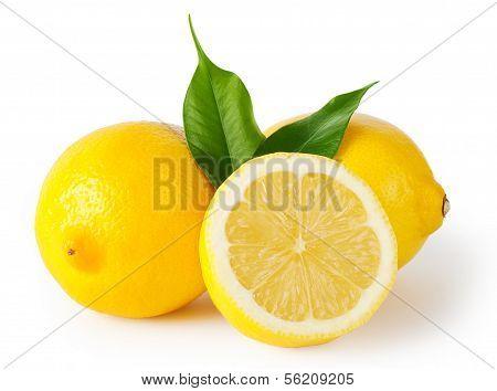 Three Lemons With Leaves