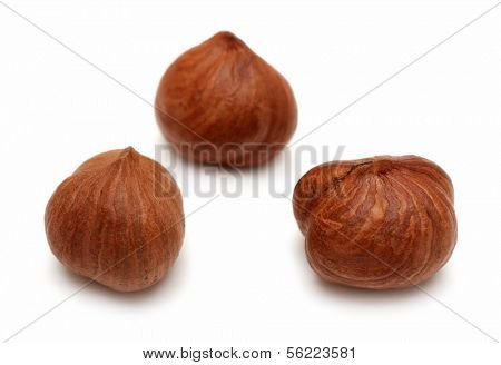 three clear hazelnuts isolated on white