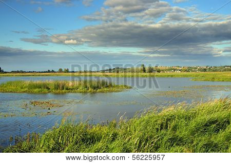 summer marshland lake landscape with cloudy sky