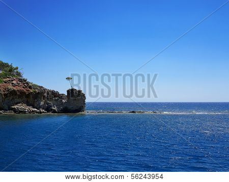 Landscape, Sea, Rocks,  Solitary Tree.