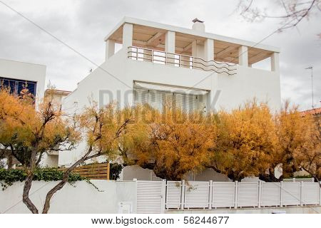 White house and yellow trees in Barcelona