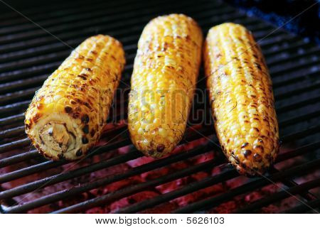 Three Roasted Corns