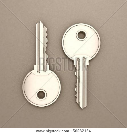 Keys  isolated on grey. 3d illustration.