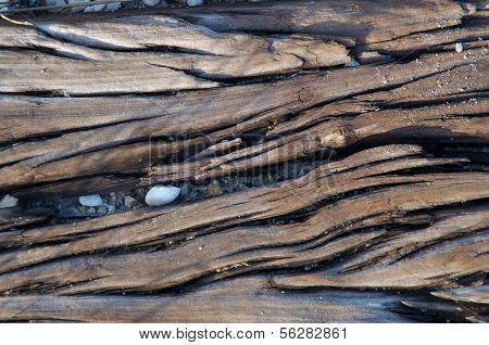 Dried Wood Grain
