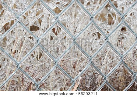 Closeup of a fence with ice