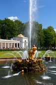 stock photo of samson  - Samson fountain in petergof park Saint Petersburg Russia - JPG