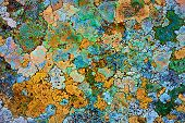 picture of rusty-spotted  - Old rusty iron for background with spots of moss - JPG