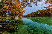 stock photo of crystal clear  - Emerald Green Crystal Clear Waters of the Frio River Surrounded by Beautiful Fall Foliage on the Giant Bald Cypress Trees at Garner State Park - JPG