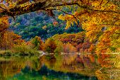 stock photo of opulence  - Beautiful Fall Color on Giant Cypress Trees Reflected in the Clear Waters of the Frio River at Garner State Park - JPG