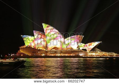 Sydney Opera House Covered In Flowers During Vivid Sydney