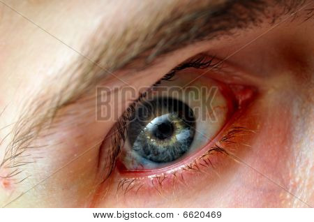 Intense Eye With Blood Vessels