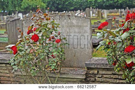 old cemetery war memorials