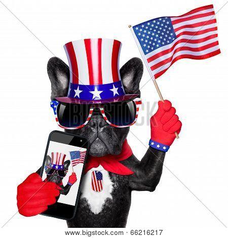 American Selfie Dog