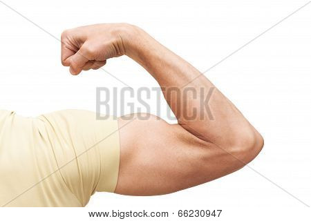 Strong Male Arm Shows Biceps. Closeup Photo Isolated On White