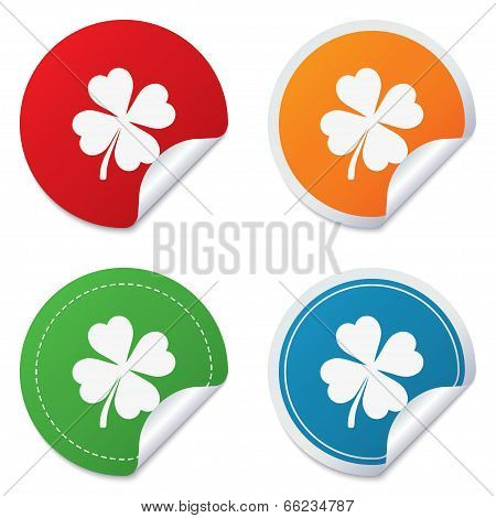 Clover with four leaves sign. St. Patrick symbol