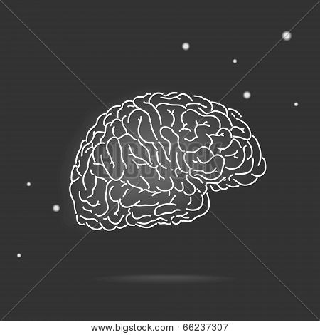 Mysterious brain