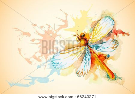 Vector Horizontal Background With Orange Dragonfly
