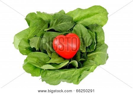 Fresh green leaves spinach and red heart