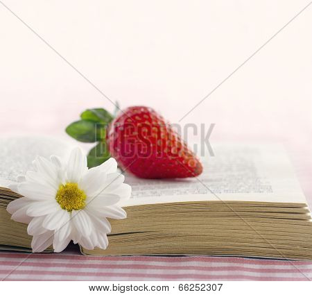 Book With A Daisy Flower And Red Strawberry