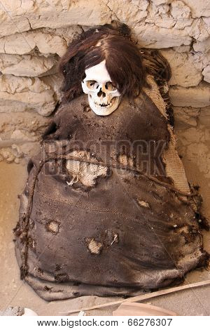 Ancient Mummy Wrapped In Fabric