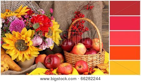 Autumn still life with apples. Color palette with complimentary swatches