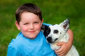 picture of cattle dog  - Child lovingly embraces his pet dog outdoors