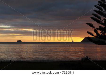 Sunrise At Whitianga New Zealand