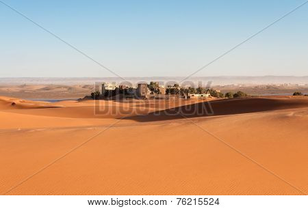 Oasis In The Sahara Desert