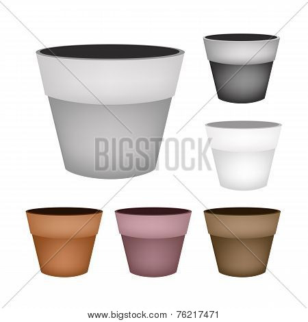 Set of Terracotta Flower Pots on White Background