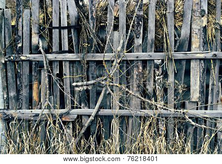 Old grungy wooden fence with grass branches