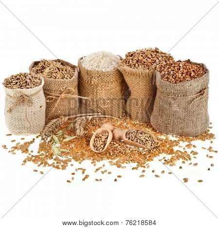 Corn kernel seed meal and grains in bags with wooden scoop isolated on a white background