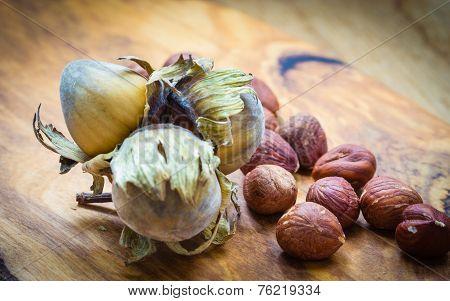Hazelnuts Cluster Filbert Nuts In The Hard Shell.