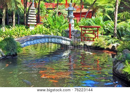 Lovely pond with goldfish. The banks of the pond fenced railing red Chinese-style. Across the pond spanned by graceful bridge. In the depths of the park is visible Chinese gazebo