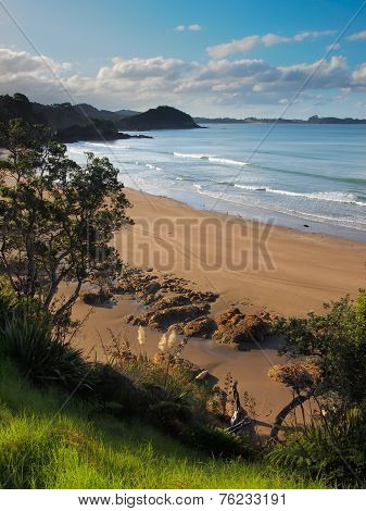 Wild Beach In Bay Of Islands, Northland New Zealand