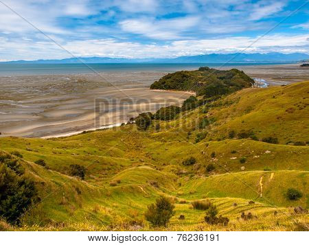 View Over Grassland At Puponga Bay, South Island, New Zealand