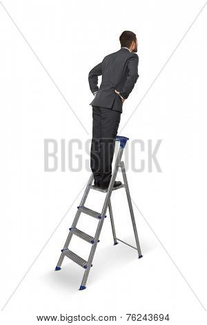 back view of businessman on the stepladder. isolated on white background