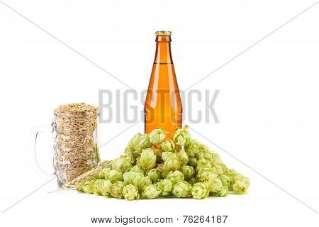 Bottle of beer and hop in glass